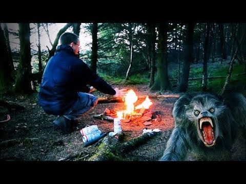 Wild Camping in the Woods