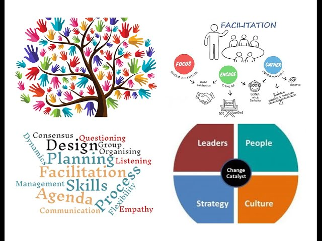 Who Is a 'Facilitator' and What does a Facilitator help with?