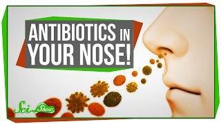 Antibiotics In Your Nose!