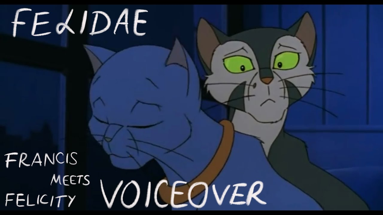 Felidae Francis Meets Felicity Voiceover Ft Nightmaresnake Youtube