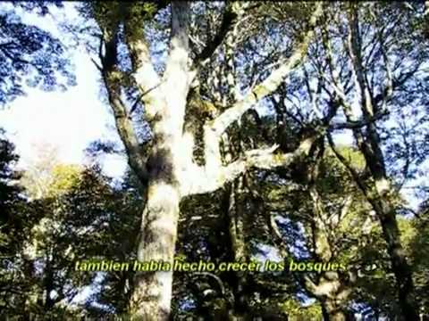 Relato Mapuche de la creacion del Mundo.