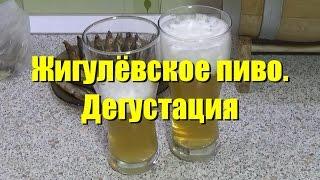 Жигулёвское пиво. Дегустация(Наш сайт: http://siberiancustom.ru В данном виде мы попробуем недавно сваренное Жигулевское пиво и оценим его качеств..., 2017-03-09T14:29:20.000Z)