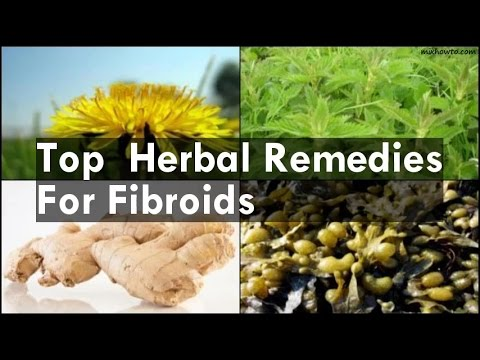 Top  Herbal Remedies For Fibroids
