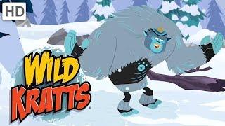 Wild Kratts - Creatures of China   Kids Videos