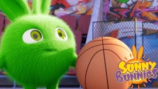 Video Cartoons for Children | Sunny Bunnies THE SUNNY BUNNIES PLAY BASKETBALL| Funny Cartoons For Children download MP3, 3GP, MP4, WEBM, AVI, FLV September 2018
