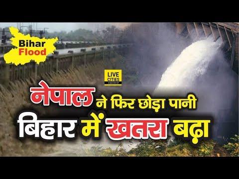 Bihar Flood : Nepal Saptakoshi River का Water Level बढ़ा, Bihar में छूटा पानी, Kosi River से खतरा