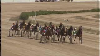 Vidéo de la course PMU PREMI ANA
