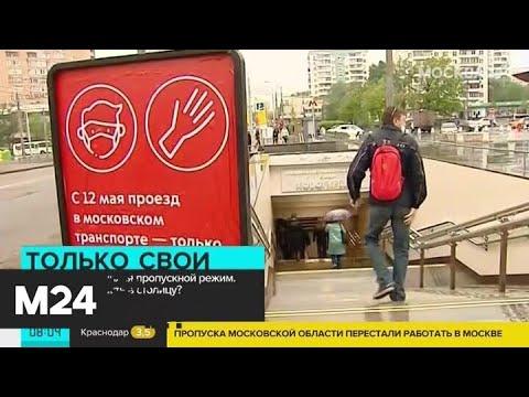 В Москве начали действовать только столичные цифровые пропуска - Москва 24