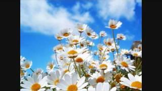 Yamin ft. Marcie - Forward Motion (Original Mix)