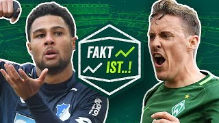 Fakt ist..! abstieg und champions league! bvb, hsv, freiburg! bundesliga vorschau 31. spieltag 17/18