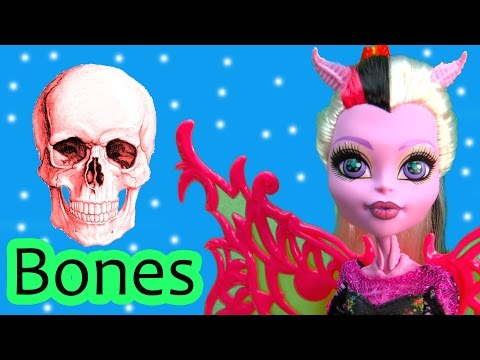 Monster High Learn Bones Clear Skeleton Academy School Part 1 Bonita Femur Neighthan Rot
