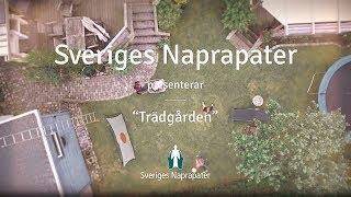 Sveriges Naprapater - Trädgården