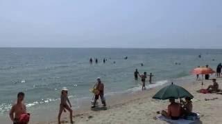 Пляж на Бердянской косе в Азовском море(КАНАЛ ПОЛЕЗНОЙ ИНФОРМАЦИИ Не забудь подписаться на мой канал https://www.youtube.com/channel/UCcJ2ZRvrwACBBKxxcXf6XPA Прекрасное..., 2016-08-04T16:01:45.000Z)