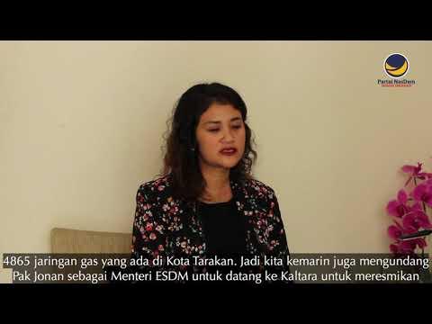 Dr. Ari Yusnita, Anggota DPR RI Fraksi Partai NasDem Dari Dapil Kalimantan Utara