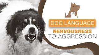 Understanding Dog Language  Nervous to Aggressive Behaviour