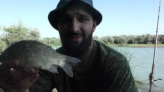 Рыбалка на реке Сулак жарим стейки