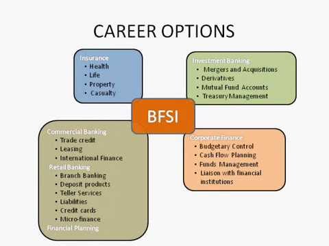 Careers in Banking and Finance and Insurance INFORMATIVE