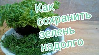 Как сохранить зелень в холодильнике свежей надолго