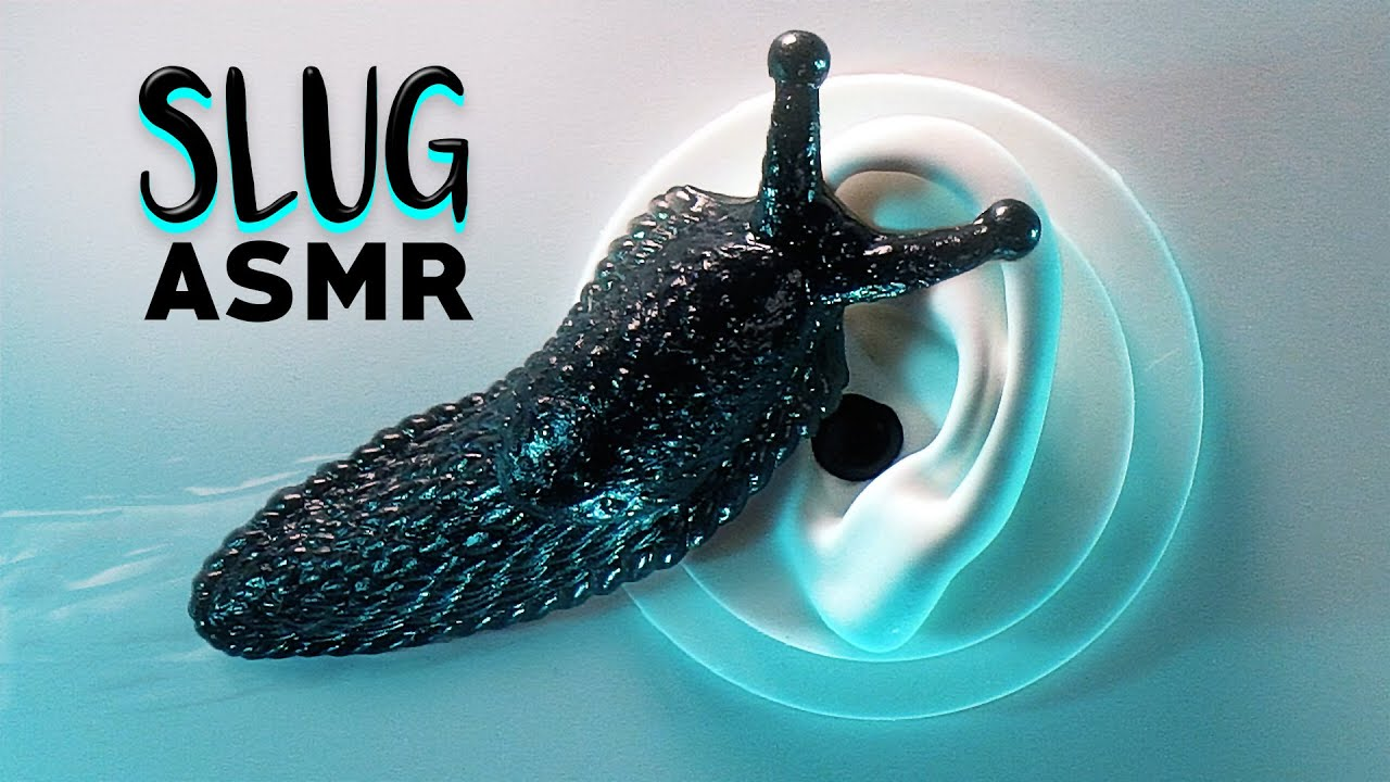ASMR Slimy Slug Massage & Other Unique Triggers to Make You Tingle