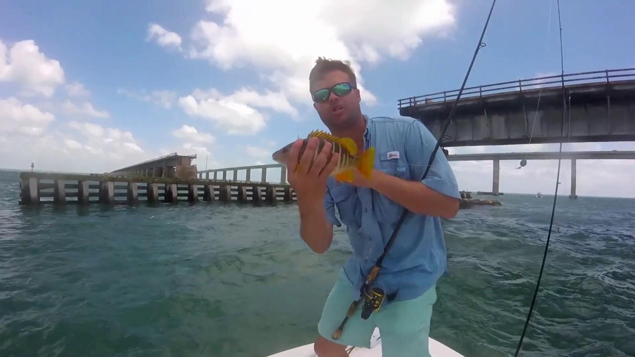 Florida keys fishing seven mile bridge snapper youtube for Florida keys bridge fishing