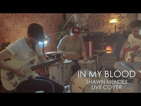 In My Blood (Shawn Mendes) LIVE cover