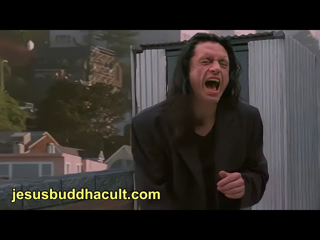 The Room-'I Did Not Hit Her!, I Did Naaaht! Oh, Hi Mark!'-The Disaster Artist. BRIEF EDIT