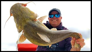 Is It Time for Flathead Catfish?