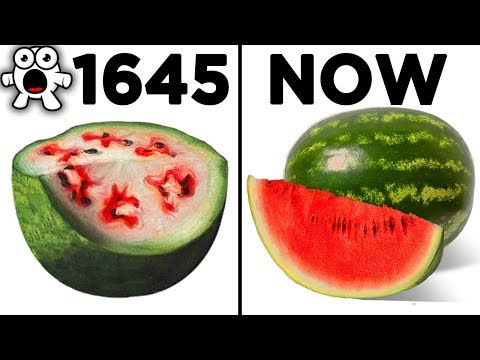 Top 10 Foods That Originally Looked Totally Different