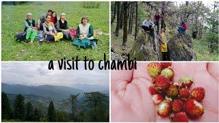 a visit to chambi|#baghal #chambi