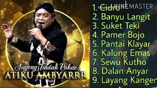 Download lagu Didi kempot, full album sobat ambyar ( cidro, pamer bojo, suket teki, sewu kuto,dll )