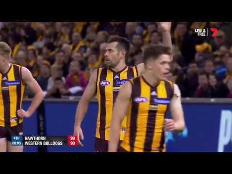 Round 23 AFL - Hawthorn v Western Bulldogs Highlights