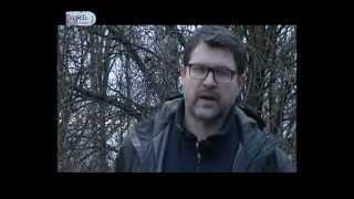 видео АвтоЭлита - Новости автокредитования и автострахования