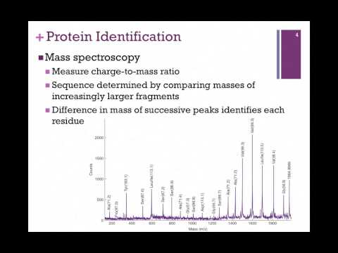 023-Mass Spectroscopy