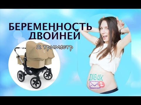 Моя беременность двойней / 2 триместр беременности двойней