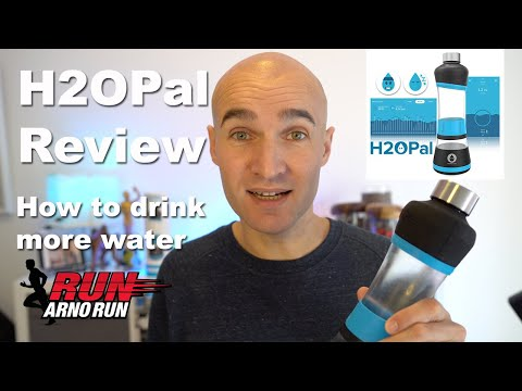H2O Pal Review   How To Drink More Water