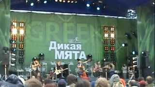 "Zdob si Zdub Tiganii si Inoplaneteanii ""Дикая Мята"" 03,06,2012"