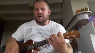 I'll love you till the end ukulele cover