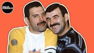 Así Fue La Relación Prohibida De Freddie Mercury Con Jim Hutton