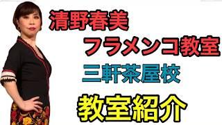 清野春美フラメンコ教室 教室紹介