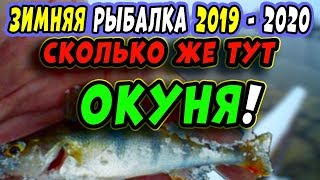 Зимняя Рыбалка 2019 2020 Ловля ОКУНЯ НА МОРМЫШКУ зимой