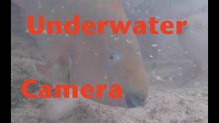 Underwater Bridge Camera In The Florida Keys