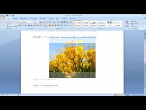 Using Microsoft Word to Build Websites
