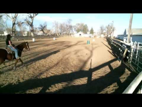 martis horse farm