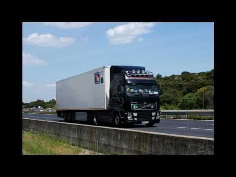 torello trasporti international spedition logistik lkw