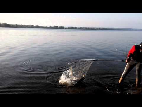 как ловить на реке вятке