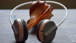 Rapoo Bluetooth Stereo Headset H6020 Review