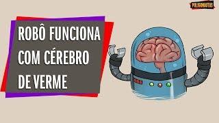 Cérebro de Verme é Transferido Para um Robô - e FUNCIONOU! |  SpaceList