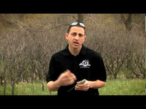 Deer Calling Instructional Video - Extinguisher