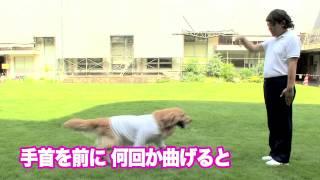 7月某日、吉本興業東京本社の中庭には、あたりまえ体操の衣装に身を包...