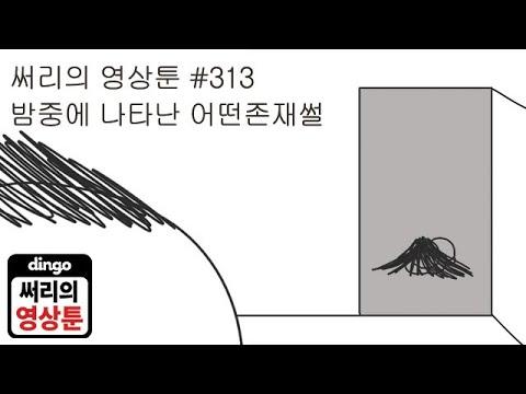 [써리의 영상툰] #313 밤중에 나타난 어떤 존재썰